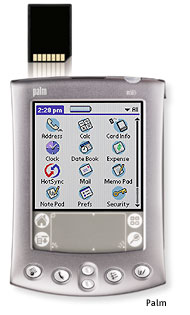 palm inc from handhelds View and download palm m505 owner's manual online palm handheld pda owner manual m505 pda pdf manual download.